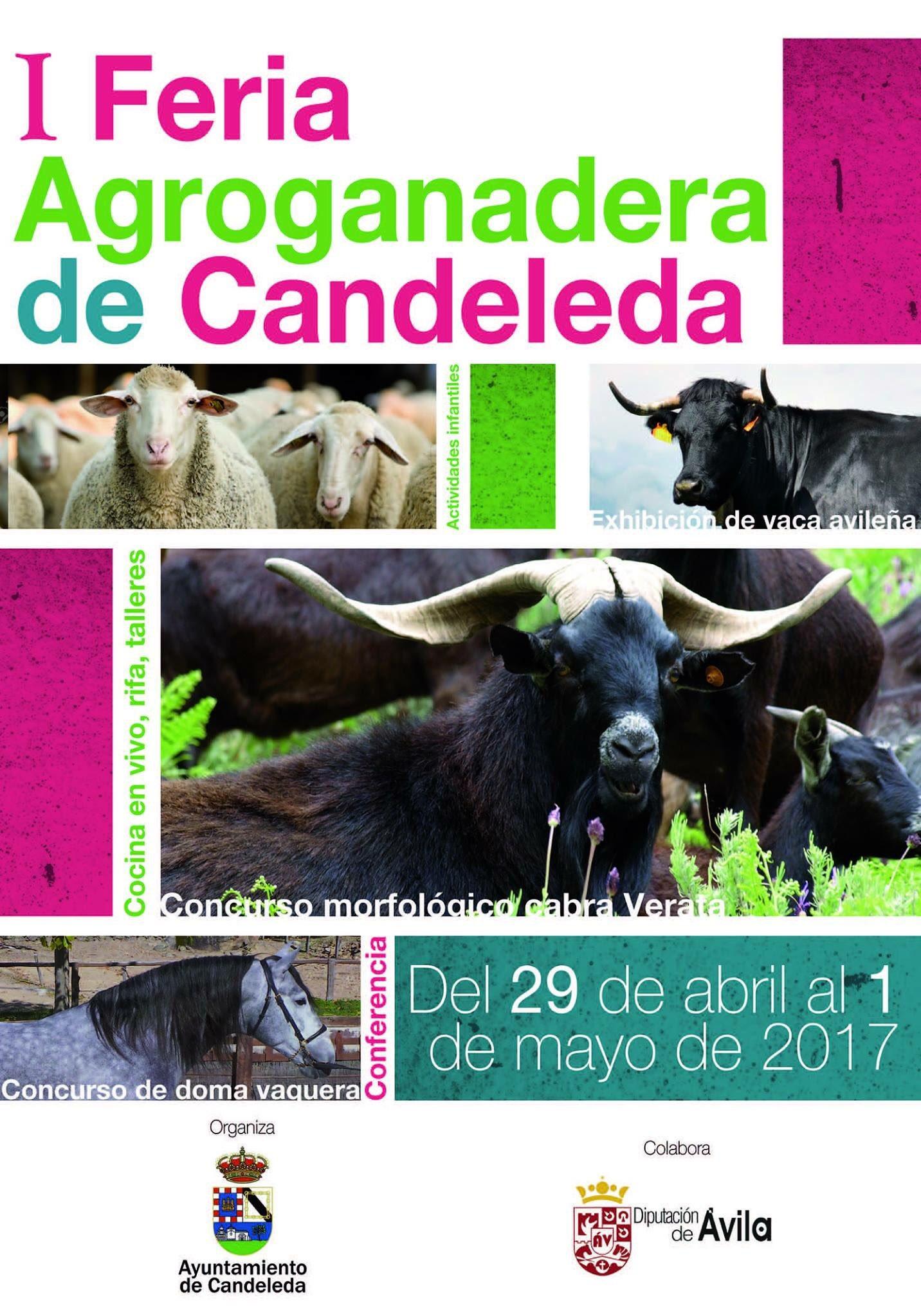 I Feria Agroganadera en Candeleda