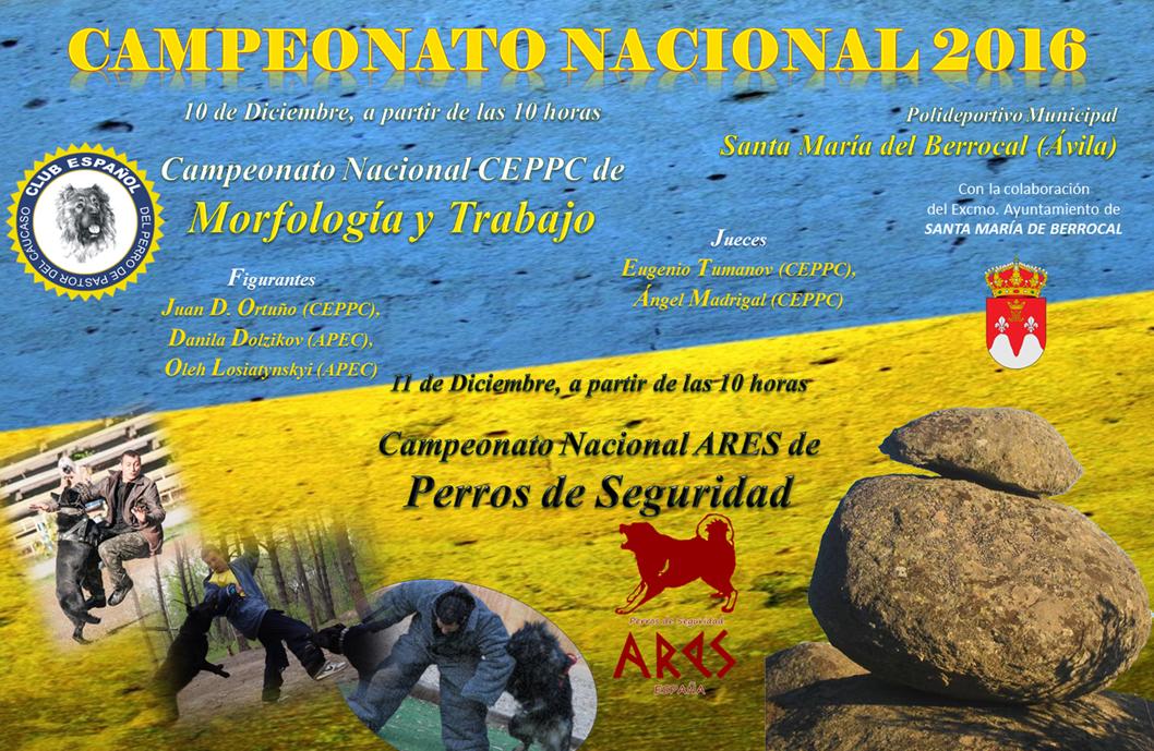 Perros Pastores Santa M. del Berrocal